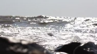 Waves crashing against stones and sunlight reflected  in water — Stockvideo