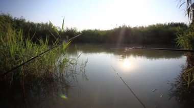 Fishing  in sunrise. Sunlight shines in the water. Spinning on rod pod — Stockvideo