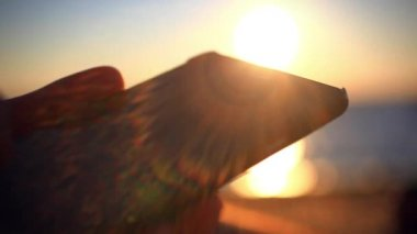 Mans hands uses mobile smartphone near the sea at sunset beach. With blurred reflected In water background — Stock Video