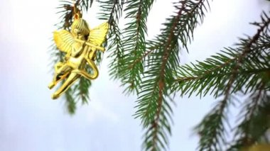 Christmas decoration with gold little angels on branch of spruce. — Stock Video