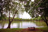 Bangkok city view with Garden — Stock Photo