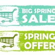 Big spring sale and offer with shopping cart signs, green drawn — Stock Photo #69852297