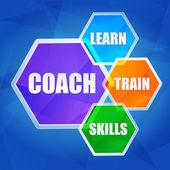 Coach, learn, train, skills in hexagons, flat design — Stock Photo