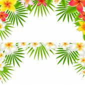 Tropical Flowers Border Set — Stock Vector