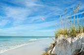 Beautiful Florida Coastline — Stock Photo