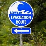 Tsunami Evacuation Route Sign — Stock Photo #62307509
