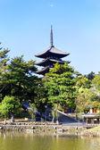 Nara Landmark — Stock Photo
