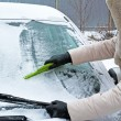 Постер, плакат: Woman remove snow from windshield