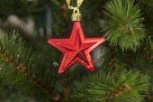 Red star on christmas tree — Stock Photo