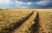 Turn of rural road in steppes — Stockfoto