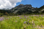 Pirin Mountain Landscape — Stock Photo