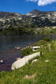 Popovo Lake, Pirin Mountain — Stock Photo