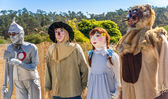 Wizardly Scarecrows — Stock Photo
