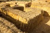 Hay Maze — Stock Photo