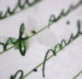 Old Letter Macro — Stock Photo