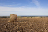 Plowed field with round hay bale — Stock Photo