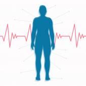 Vector Cardiac Frequency — Stock Vector