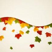Vetor de folhas de outono — Vetorial Stock