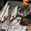 Cooking fish grilled over hot coals bonfire — Stock Photo #53860217