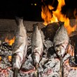 Cooking fish grilled over hot coals bonfire — Stock Photo #53860239