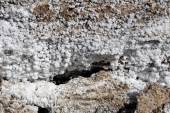 Salt crystallisation at coast of the Dead Sea, Jordan — ストック写真