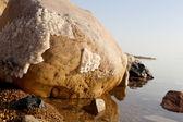 Krystalizacji soli na wybrzeżu Morza Martwego, Jordan — Zdjęcie stockowe