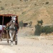 Tourist transport (carriage) in Petra,  Jordan-- it is a symbol of Jordan, as well as Jordan's most-visited tourist attraction — Stock Photo #66169437