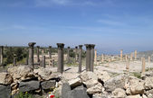 Roman Corinthian columns in Umm Qais (Umm Qays) --is a town in northern Jordan near the site of the ancient town of Gadara. Umm Qais is one of Jordan's most unique Greco Roman Decapolis sites — Stock Photo