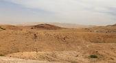 Stone desert with mountains, Jordan, Middle East — Stock Photo