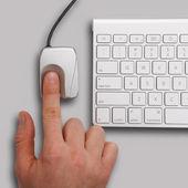 Biometric scanner and a keyboard — Stock Photo