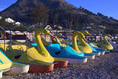 Swan Pedal Boats on Shore of Lake Titicaca in Copacabana, Bolivia — Stock Photo