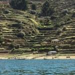 Постер, плакат: Shoreline of Isla del Sol in Lake Titicaca Bolivia