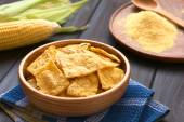 Homemade Baked Tortilla Chips — ストック写真