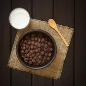 Chocolate Corn Flakes with Milk — Stock Photo