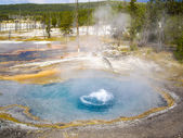 Boiling thermal springs at Yellowstone — Stock Photo