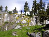 Yellowstone rotstuin — Stockfoto
