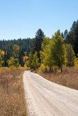 Dirt road in Grand Tetons National Park — Stock Photo