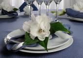 Çiçek ile süslenmiş peçete — Stok fotoğraf
