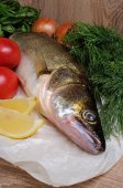 Raw fish pike perch — Stock Photo