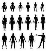 Full length front, back human silhouette set — Stock Vector