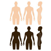 Woman mannequin outlined torso — Stock Vector