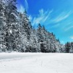 Winter landscape — Stock Photo #55495787