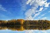 Forest reflected in lake — Stock Photo