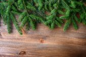 Branch of green fir tree — Fotografia Stock