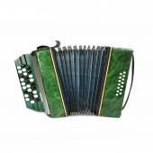 Green vintage bayan — Stock Photo
