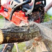 Man with the chainsaw — Stock Photo