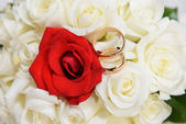 Bride's bouquet and wedding rings — Stock Photo