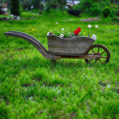 Flower bed on grass — Stock Photo