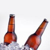 Brown bottles chilling on ice — Stock Photo