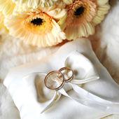 Elegant wedding rings — Stock Photo